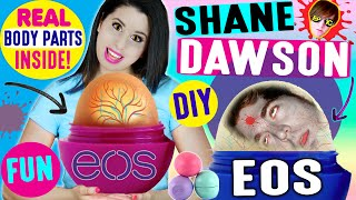 diy shane dawson eos lip balm   how to turn shane dawson into an eos   ft shane dawson