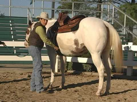 How-To Saddle a Horse Video: by the Certified Horsemanship Association