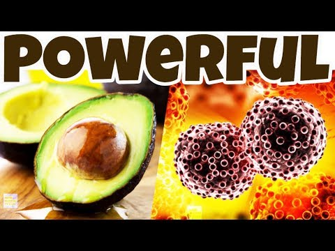 KILL CANCER TUMORS With Avocado Seeds, Powerful Antioxidant Filled Superfood Helps PREVENT CANCER