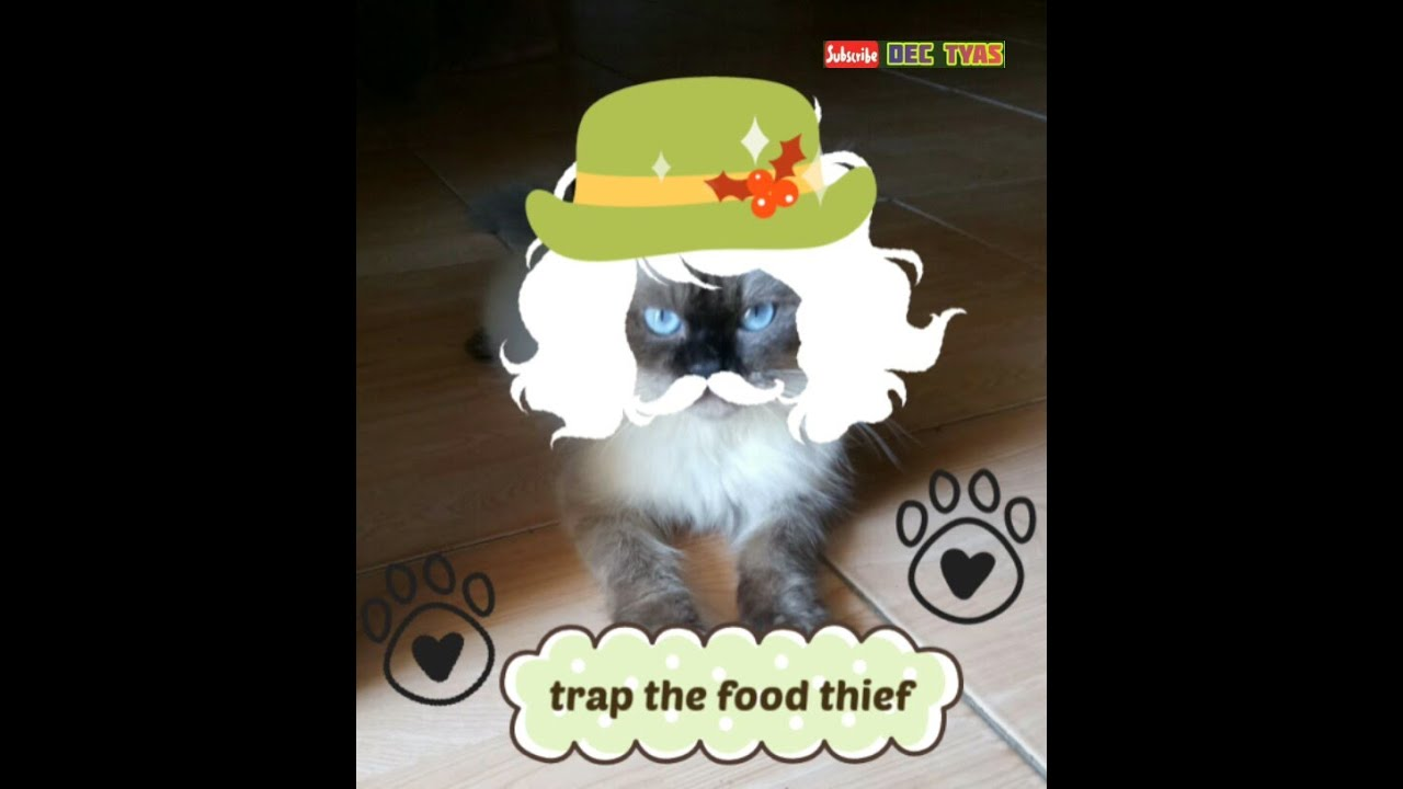"""trap the food thief"""