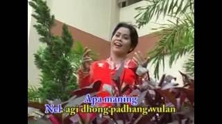 Video KOPLAK BIS PURWOKERTO download MP3, 3GP, MP4, WEBM, AVI, FLV Agustus 2018