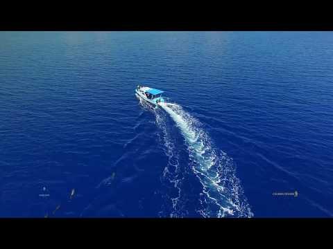 Kuda Laut Boutique Dive Resort - Siladen Island - North Sulawesi - Indonsia