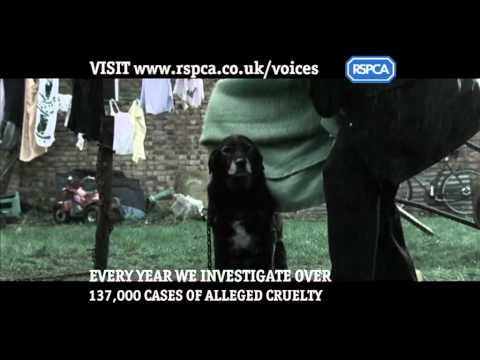 RSPCA  Campaigns - Voices