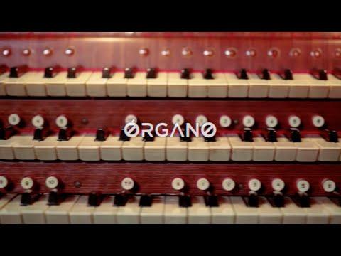 Resonancias, la armonía del sonido: Órgano
