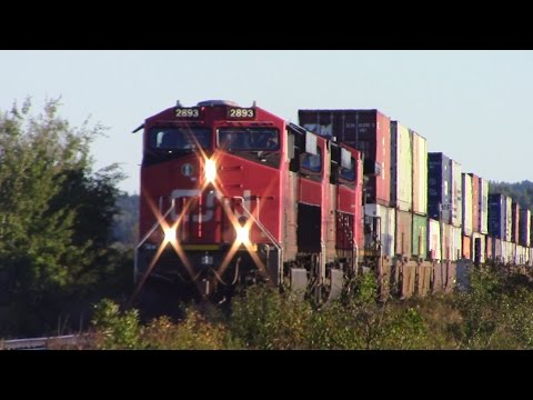 Thumbnail: Very Long CN Stack Train 120 w/DPU at Dorchester, NB (Sept 24, 2016)
