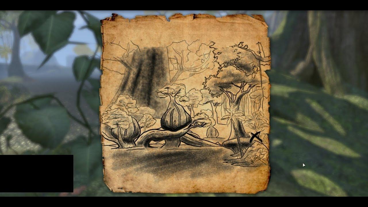 Elder Scrolls Online Grahtwood Treasure Map II - YouTube