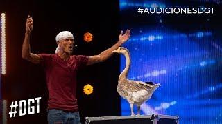 Juan y su ¨patico hembra¨ Lola demuestran su talento | Dominicana's Got Talent 2019