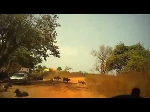 Overland West Africa - GUINEA CONAKRY - 2014
