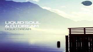Liquid Soul & DJ Dream - Liquid Dream (2014)