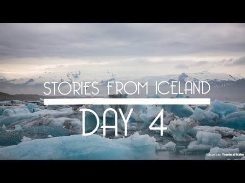 The birds that fly high above us all - Stories from Iceland day 4