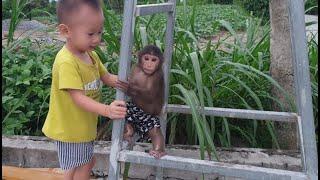 Cute Baby Really Loves Monkey Doo