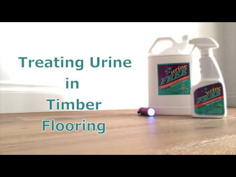 Urinefree Removing Urine In Timber, How To Get Rid Of Human Urine Smell On Laminate Flooring