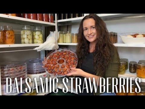DEHYDRATING STRAWBERRIES IN A FOOD DEHYDRATOR - Dried Berries