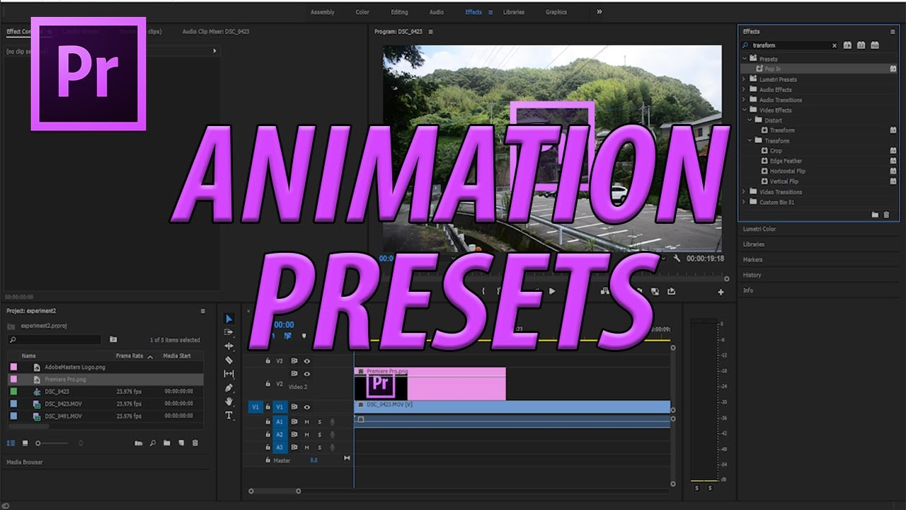 how to create animation presets in adobe premiere pro cc 2017
