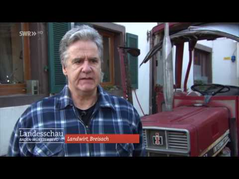 Bauernhof wird Fußgängerzone | Breisach