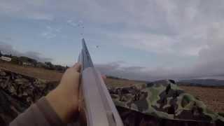 Ouverture de la chasse à la palombe (pigeon) et de la tourterelle, act1