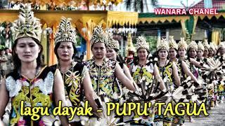 Download Lagu LAGU DAYAK-PUPU TAGUA mp3