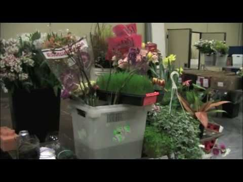 Illinois Florists Convention — Behind The Scenes