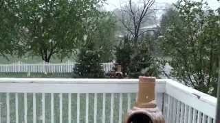 Winter in Summer in IL? Snow falls in Chicago Illinois Suburb on May 16th 2014, and it's sticking!