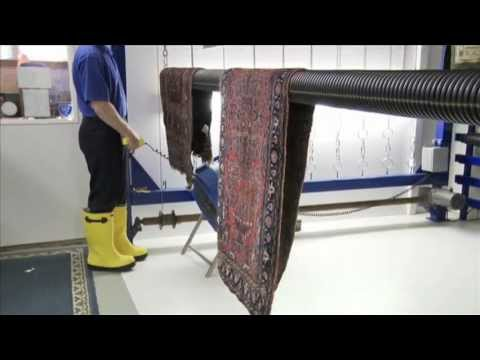 Area Rug Cleaning Company Ann Arbor Mi Pet Odors And How We Stop Them