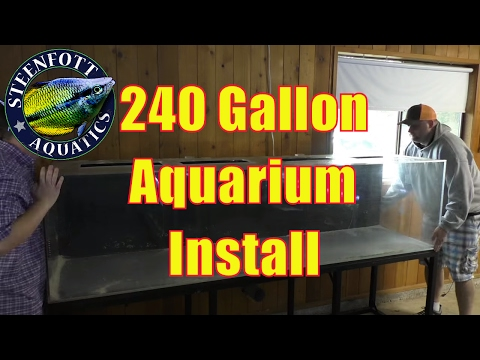 How to Setup an Aquarium: 240 Gallon Fish Tank