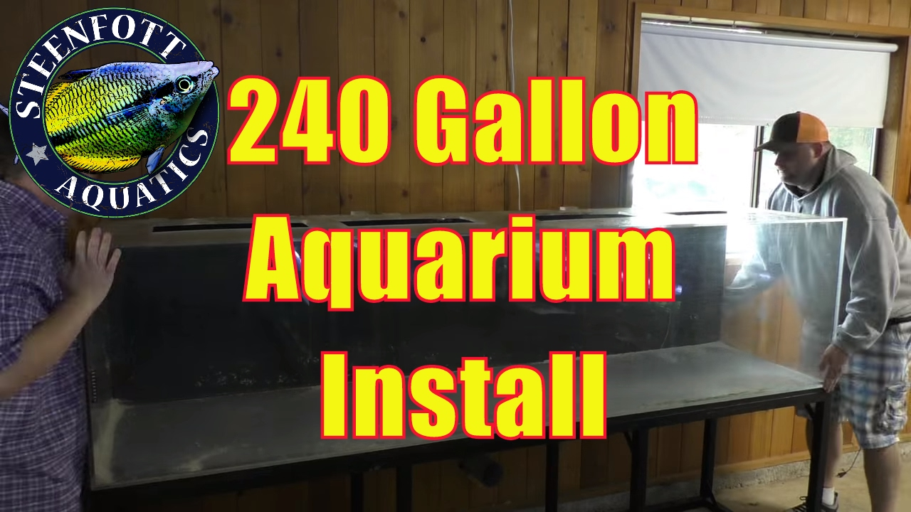How to Setup an Aquarium: 240 Gallon Fish Tank - YouTube