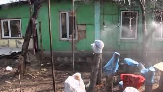 туманообразование низкого давления над грибницей на пнях x264(, 2015-03-20T06:34:23.000Z)