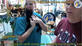 FFRC Batman Adoption 7-7-2018