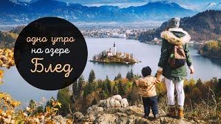 Блед на рассвете. Одно утро в Словении | Влог: Как дела?