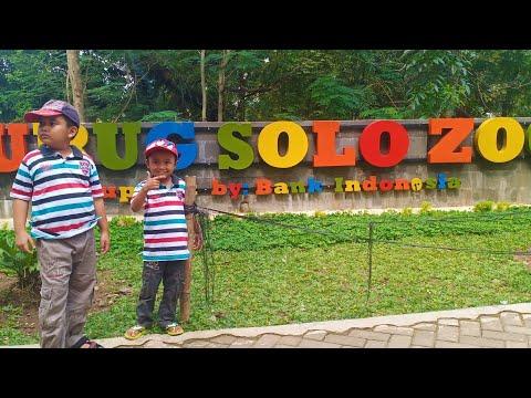 wisata-jurug-solo-zoo---bonbin-jurug-surakarta