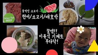 초기이유식 2 - 풀먹인 소고기/현미/애호박ㅡ후다닥 꿀…