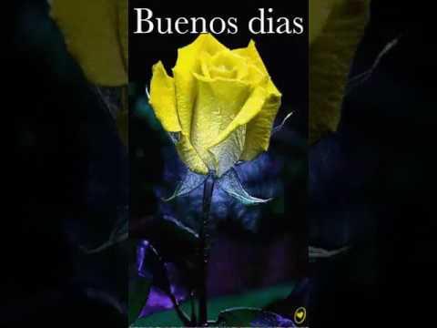 Buenos Diaspaz Y Armonia Espiritual Youtube