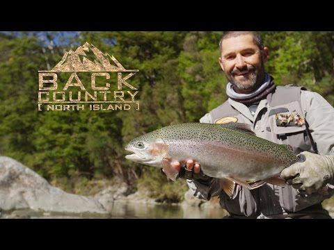 Fly Fishing NZ - Backcountry North Island Trailer