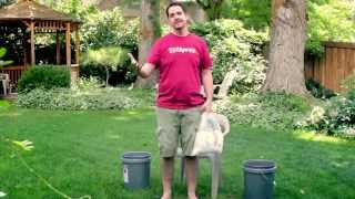 Curtis' Ice Bucket Challenge