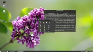 Баг Linux Mint 18.1 который меня просто добил...Простите за звук...