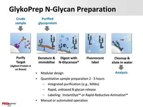 Workflow Solutions for High-Speed Glycan Analysis