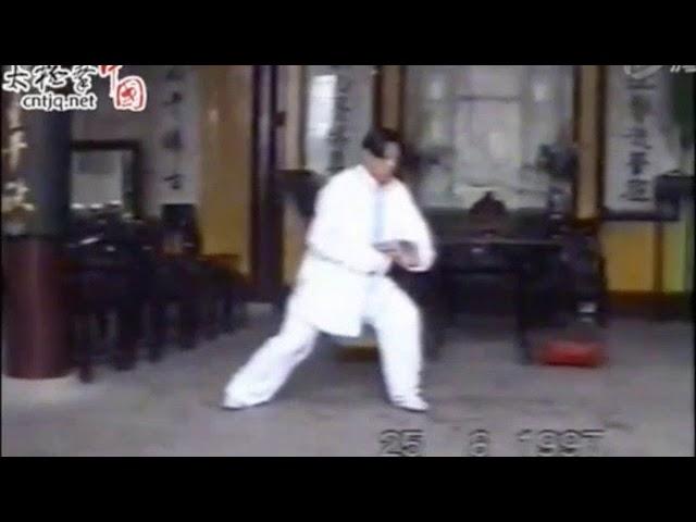 Zhu Lao Hu - Tai Chi style Chen Laojia [陈氏太极拳老架 Taijiquan style Chen]