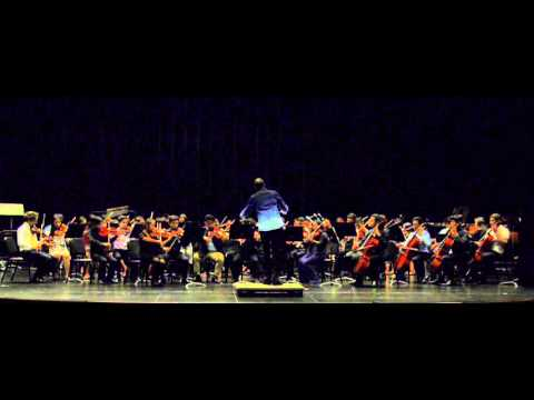 ACHS String Orchestra