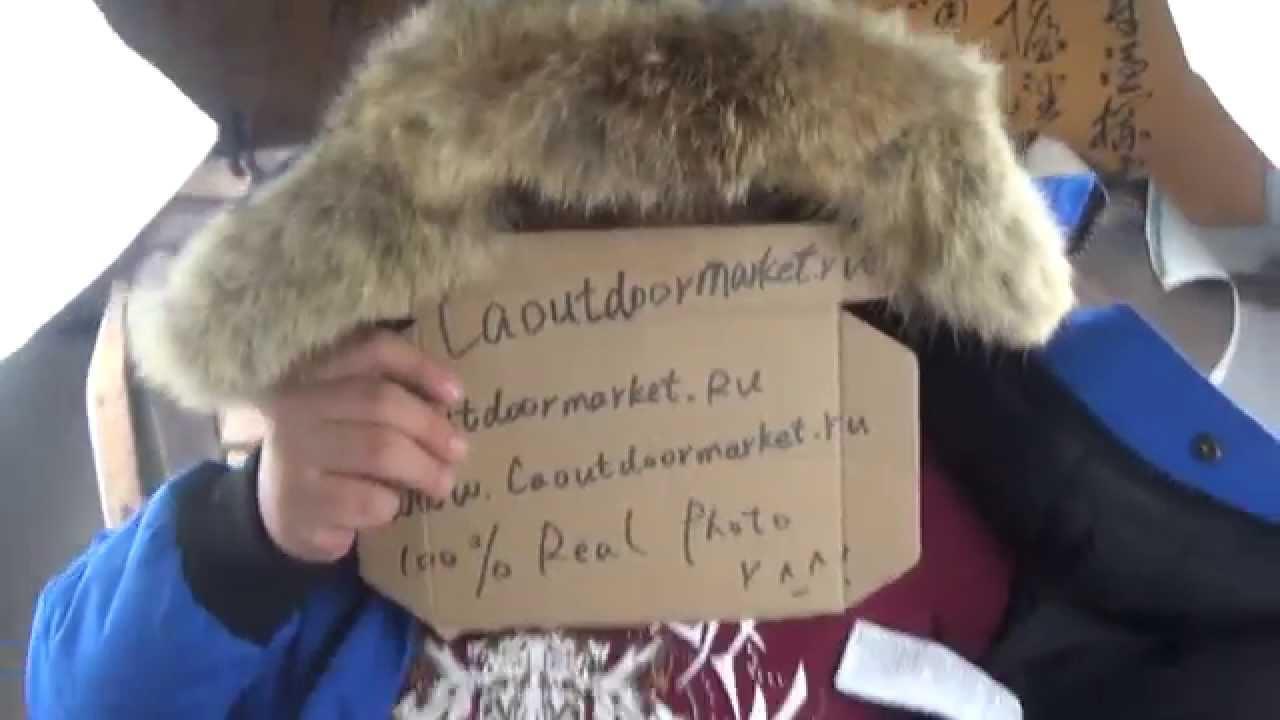 canada goose fur shedding