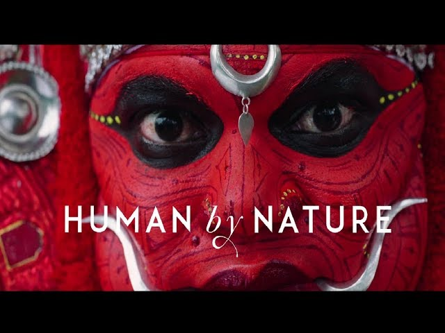 Tourist Places in Kerala: Human by Nature   Etramping Travel
