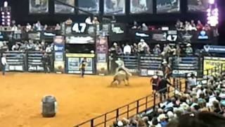 Aewsome bull ridin at the john paul jones arena