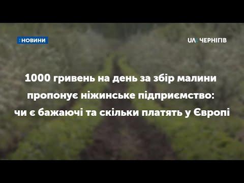 1000 гривень на