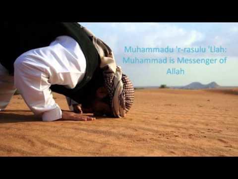 We Are Your Servants- Yusuf Islam, Zain Bhika