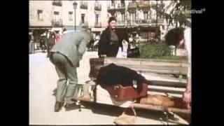 Zwei himmlische Toechter - Ein Cowboy nach Spanien