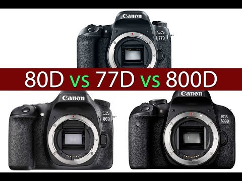Canon 80D VS 77D VS 800D | Bahasa Indonesia