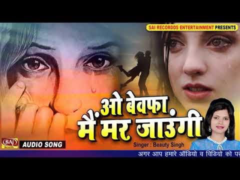 Wo Bewafa main  mar jaungi (Audio) Latest Hindis (480p)