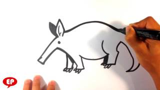 How to Draw an Aardvark (cute) - Easy Pictures to Draw
