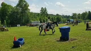ЛОШАДИ Верховая езда,обучение лошади,ШОУ КОВБОЕВ или Дикий Запад