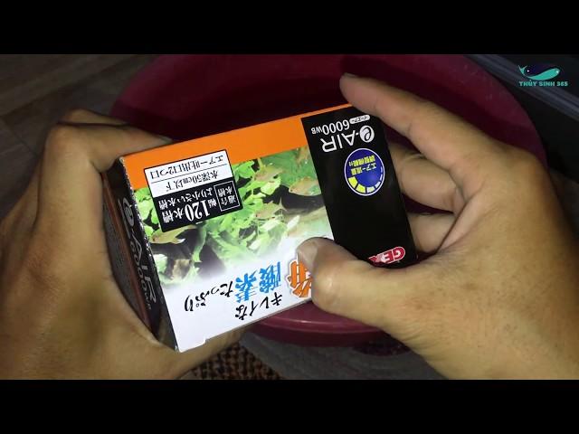 Sủi oxy mini Gex Air 6000 WB Siêu Êm -  Unbox 6000 WB