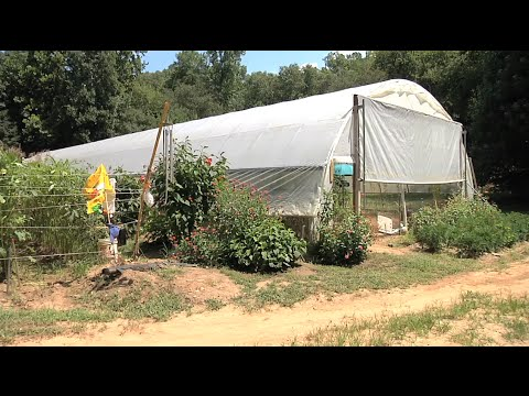 NRCS Assists Producers With High Tunnel Hoop Houses